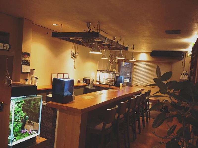 田辺に「エキゾチックカフェMoo」がオープン